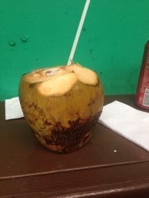 Coconut Water @ El Yunque